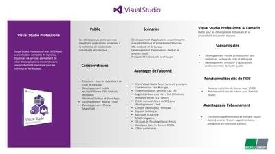 Fiche produit_Visual studio_professional